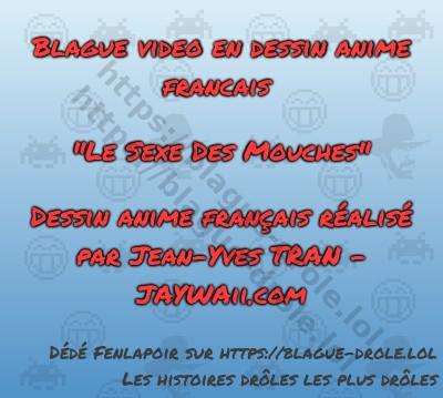 """Blague video en dessin anime francais  """"Le..."""