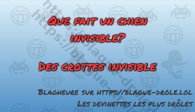 Que fait un chien invisible?   Des...