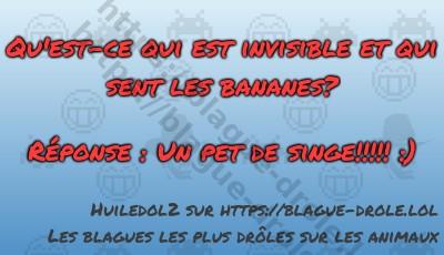 Qu'est-ce qui est invisible et...