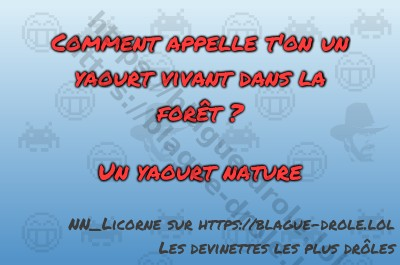 blague yaourt nature