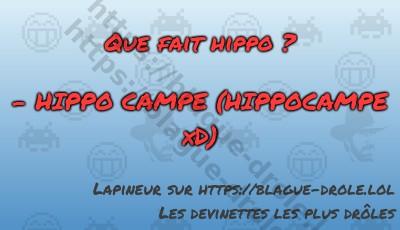 Que fait hippo ?   - HIPPO CAMPE...