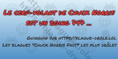 Le cerf-volant de Chuck Norris...