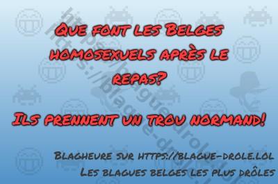 Que font les Belges homosexuels...