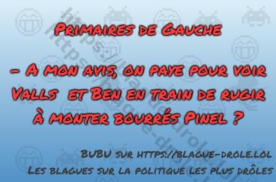 Primaires de Gauche  - A mon avis,...