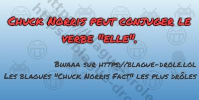 Chuck Norris peut conjuger le verbe...
